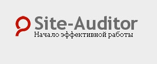 Site Auditor 3.0.10